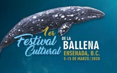 1st Annual Whale Festival